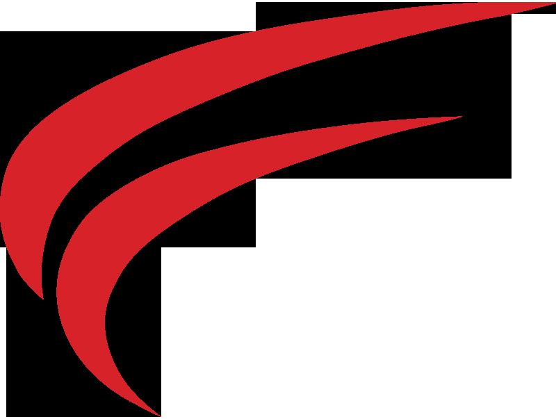 Flug mit der Cirrus SR 20 zum Red Bull